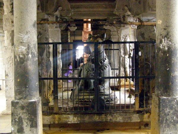 Для храмов, посвящённых двойному символу Шивы (лингаму) и построенных специально для этого, существует правило, что Господь должен быть виден только через рога быка, помещённого снаружи.